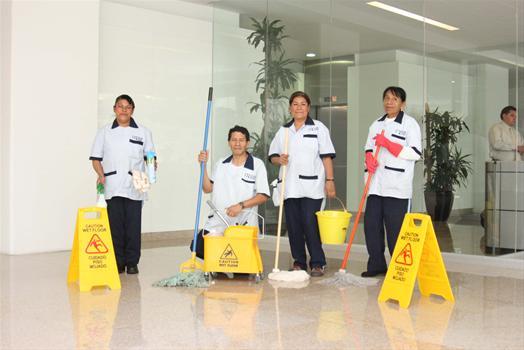 Servicio de limpieza hogar y construccion for Empresas limpieza hogar madrid